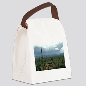 Arizona Desert and Cactuses Canvas Lunch Bag