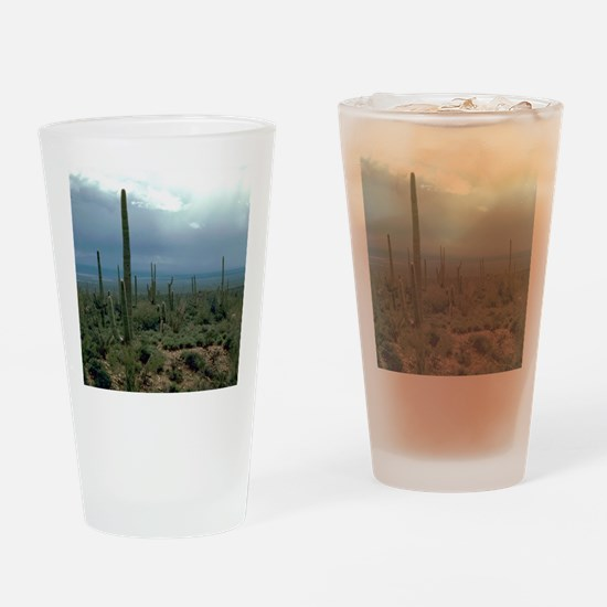 Arizona Desert and Cactuses Drinking Glass