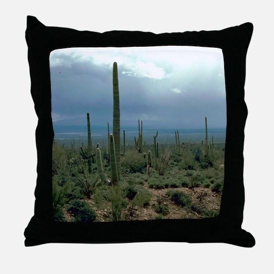 Arizona Desert and Cactuses Throw Pillow