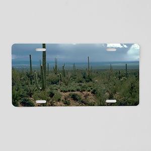 Arizona Desert and Cactuses Aluminum License Plate
