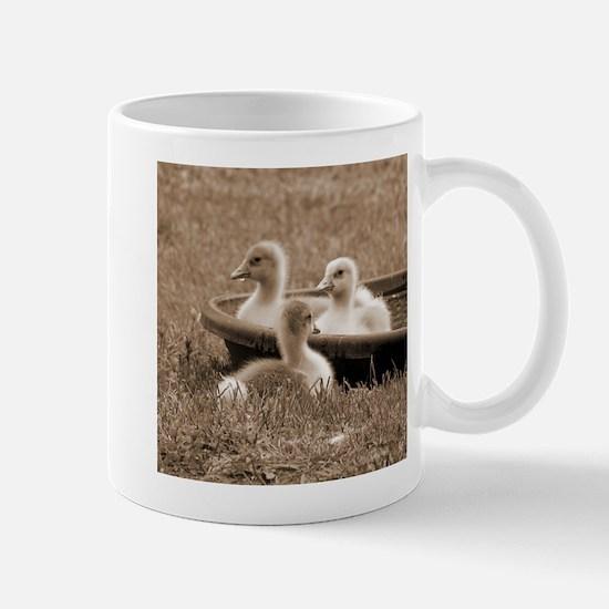 Three little goslings wildlife in the morning Mugs