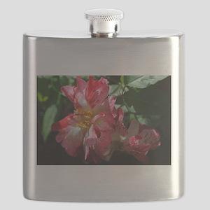 DSC_0010 Flask