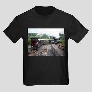Brecon Mountain Railway, Wales 2 T-Shirt