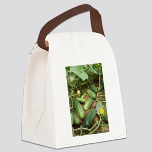 Cucumbers Canvas Lunch Bag
