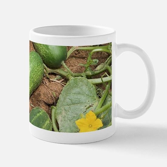 Cucumbers Mugs