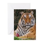 Roy - Greeting Cards