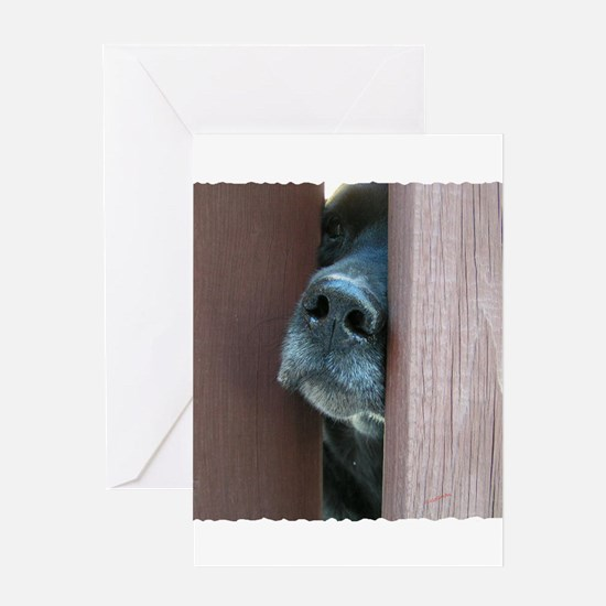 the nose knows Greeting Cards