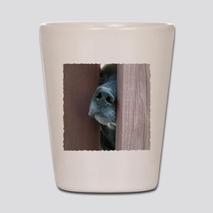 the nose knows Shot Glass