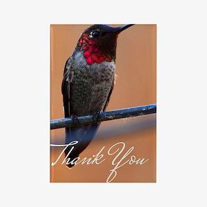 Thank You Hummingbird Rectangle Magnet