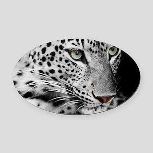 White Leopard Oval Car Magnet