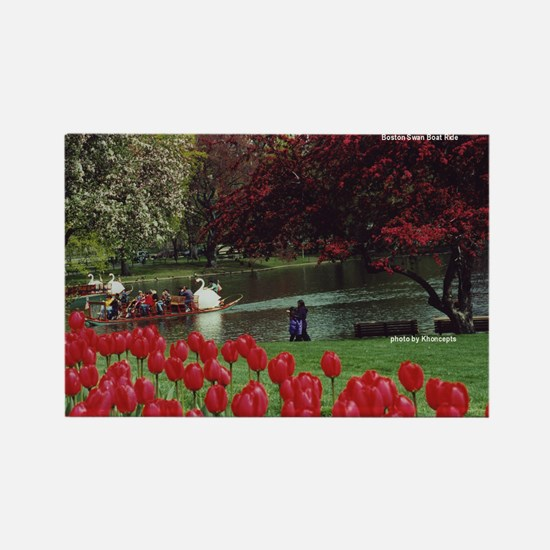 Swan Boats in Spring - Rectangle Magnet