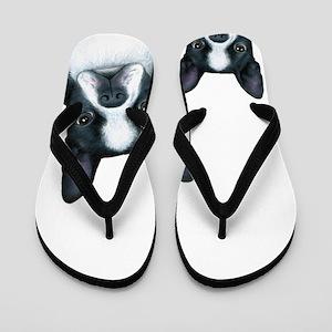 Dog 128 Boston Terrier Flip Flops