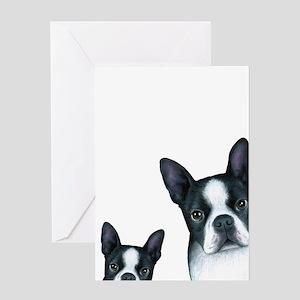 Dog 128 Boston Terrier Greeting Cards