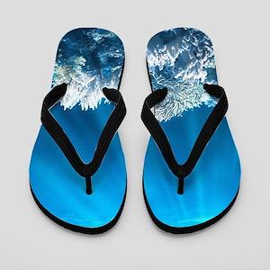 Tropical Reef Flip Flops