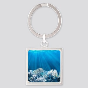 Tropical Reef Keychains