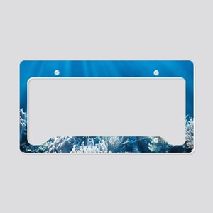 Tropical Reef License Plate Holder