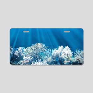 Tropical Reef Aluminum License Plate
