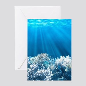 Tropical Reef Greeting Cards