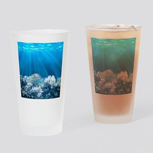 Tropical Reef Drinking Glass