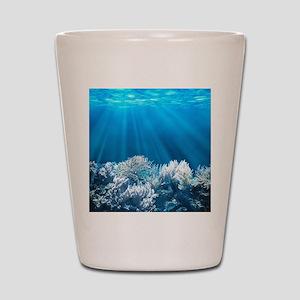 Tropical Reef Shot Glass