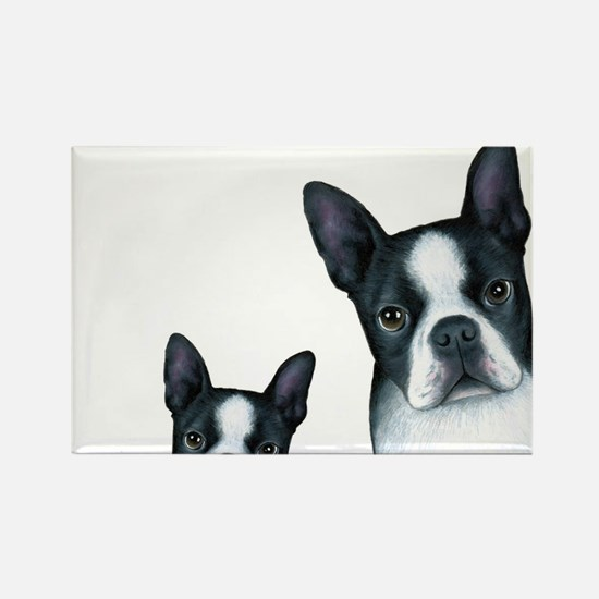 Dog 128 Boston Terrier Magnets