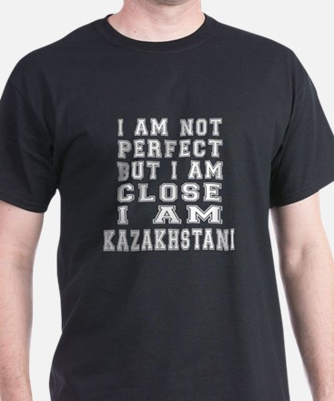 Kazakhstani Designs T-Shirt