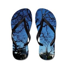 Abstract Tree Flip Flops