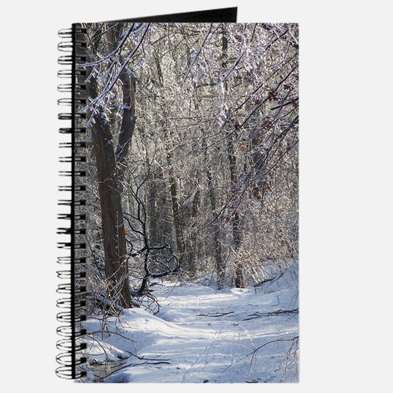 Icy Snow Trail Journal