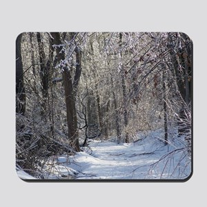 Icy Snow Trail Mousepad