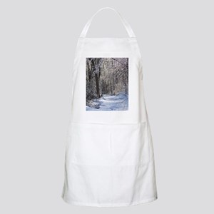 Icy Snow Trail Apron