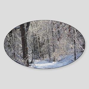 Icy Snow Trail Sticker