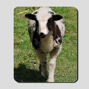 Spring Lamb Mousepad
