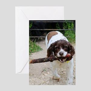 Fetch! Greeting Card