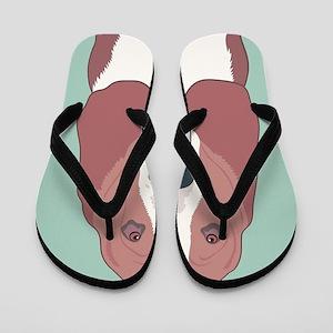 Basset Hound Flip Flops