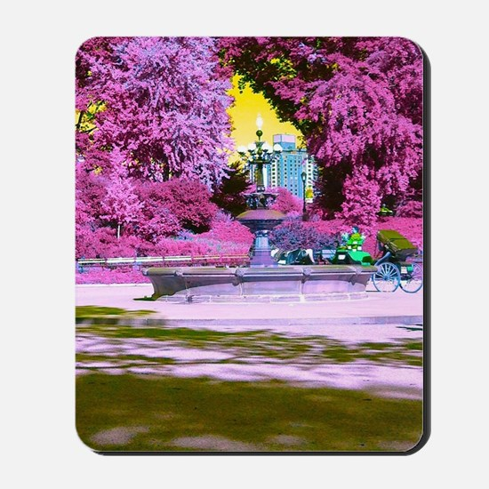 FANTASY OF A PINK PARK Mousepad