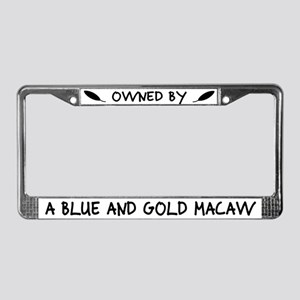 Owned by a Blue & Gold Macaw License Plate Frame