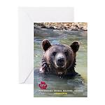 Ben The Bear - Greeting Cards