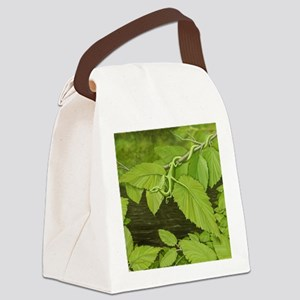 green leaf dragon Canvas Lunch Bag