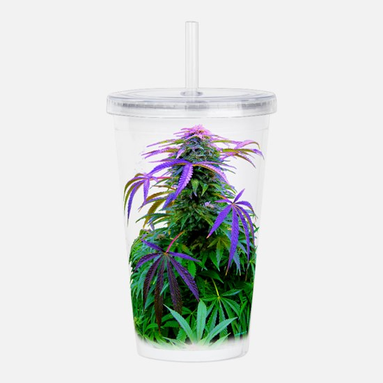 MONEY $HOT COLA ? Acrylic Double-wall Tumbler