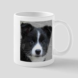 IcelandicSheepdog007 Mugs