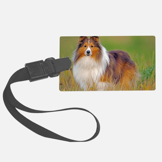 Shetland Sheepdog 01 Luggage Tag