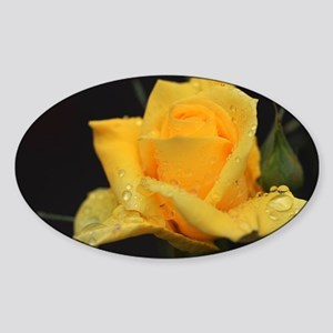 Yellow Roses Sticker (Oval)