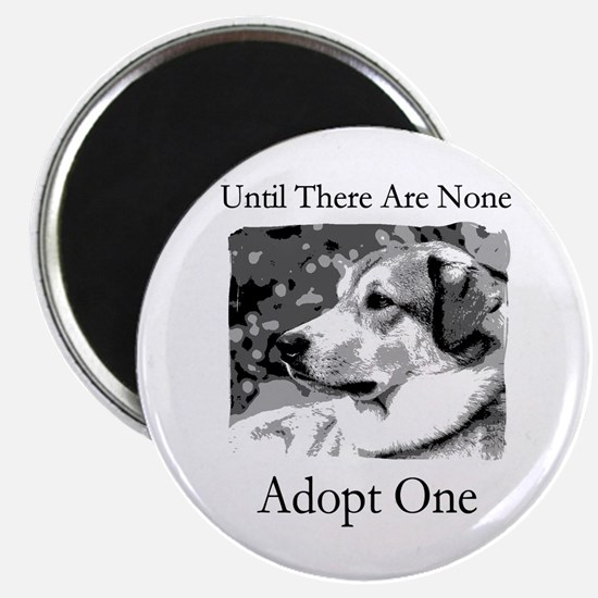 "Until There Are None...Adopt 2.25"" Magnet (10 pac"