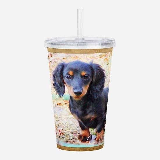Puppy Love Doxie Acrylic Double-Wall Tumbler