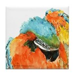 Blue-Gold Macaw Tile Coaster