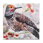 Flicker Woodpecker Tile Coaster