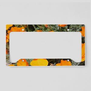 Bright Orange Poppies License Plate Holder