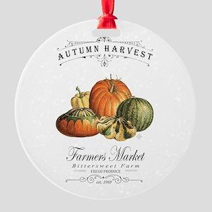 Modern vintage fall gourds and pumpkin Ornament