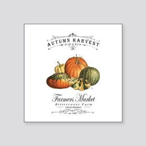 Modern vintage fall gourds and pumpkin Sticker