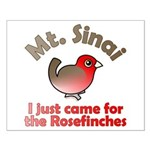 I Just Came for the Rosefinches Small Poster